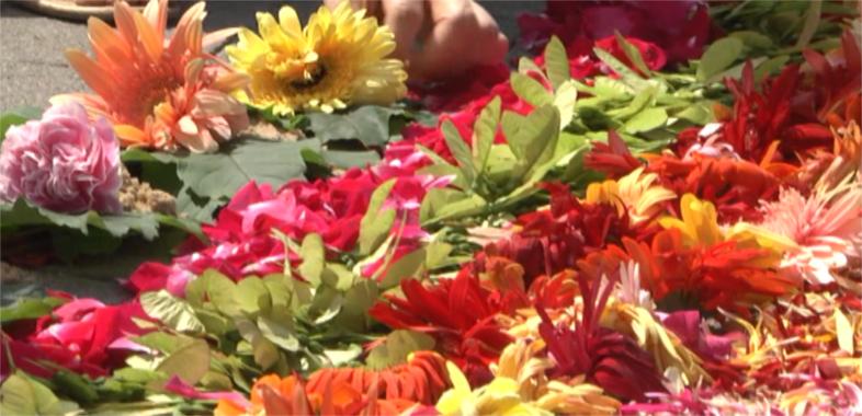 Obrazy kwiatowe w Spycimierzu