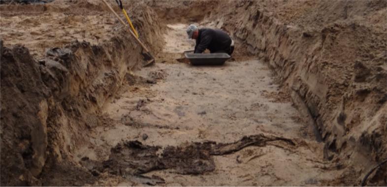 Koniec Cmentarza Ewangelickiego w Sieradzu