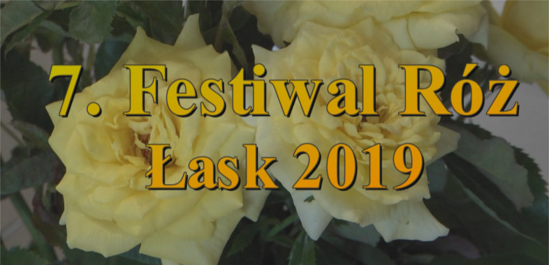 7. Festiwal Róż w Łasku