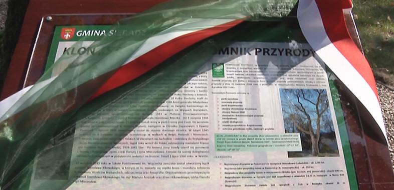 Nadanie imienia pomnikowi przyrody w Charłupii Małej